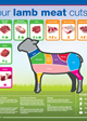 Know your lamb meat cuts